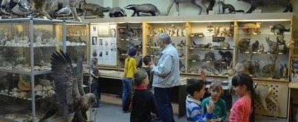 STASYS GLIAUDYS' NATURE MUSEUM