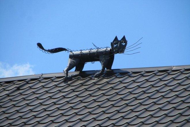 ARTISTIC ACCENT KATINAI (CATS)