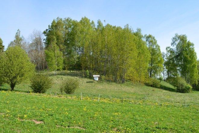 Bukantiškės piliakalnis